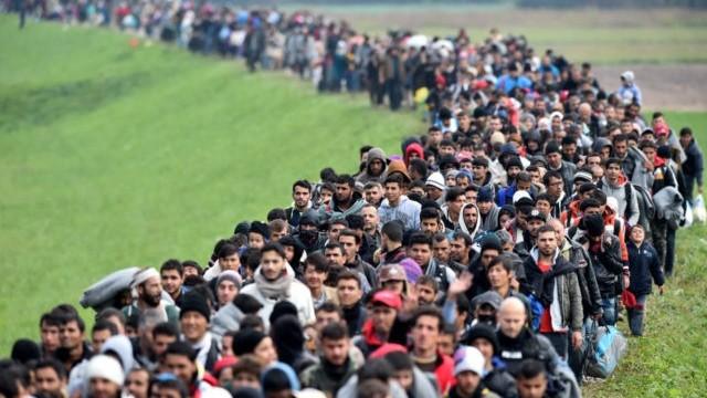 ONU | Numărul migranţilor ilegali sosiţi pe cale terestră în Europa a crescut de şapte ori în 2018