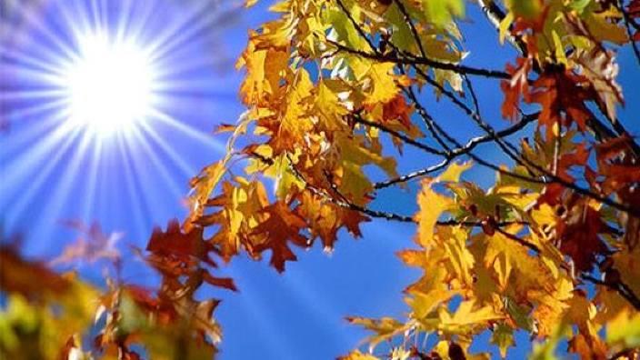 Temperaturile mai ridicate decât cele normale, în perioada octombrie-decembrie, în Europa