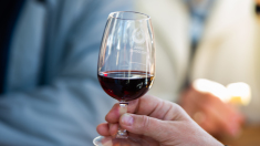 Vesticii prind gustul vinului din Republica Moldova (Ziarul Financiar)