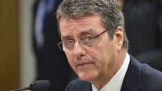 Directorul OMC avertizează că războaiele comerciale constituie un mare risc pentru economia globală