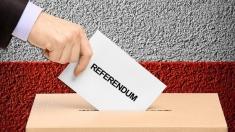 Cât va costa organizarea referendumului privind reducerea numărului de deputați