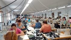 Anual se produc 100 de miliarde de articole vestimentare din fibre noi. Efectele asupra mediului sunt devastatoare