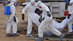 200 de cazuri de Ebola au fost confirmate în Congo, începând din august