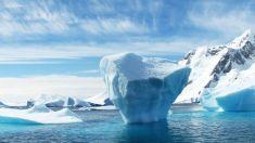 STUDIU | Topirea calotelor glaciare ar putea fi ireversibilă chiar şi la un prag al încălzirii globale de 2 grade Celsius