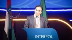 Noul preşedinte al Interpolului a fost ales