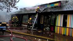 Grădina zoologică din Chester, ''devastată'' după moartea unor animale în incendiu