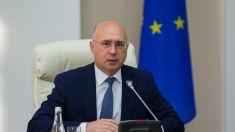 Pavel Filip | Voi participa în campania electorală