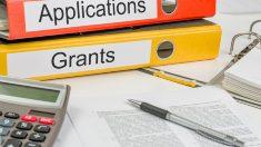 A fost lansat Programul de Granturi 2019 pentru organizațiile de tineret
