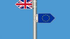 Brexit | Nu va mai exista un alt referendum privind ieșire Marii Britanii dim UE, declară un ministru de la Londra