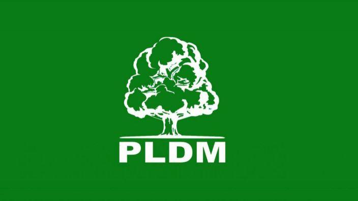 PLDM a decis formula de participare la alegerile parlamentare din februarie 2019. Va merge în bloc cu ACUM