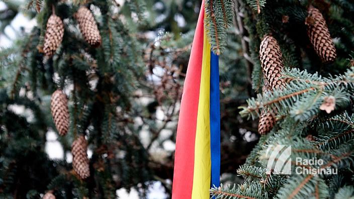 Cu drag din România | Bradul din Carpați pentru Târgul de Crăciun este instalat în centrul Chișinăului (FOTO)