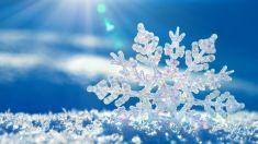 Fonograful de miercuri | Ninge la fereastră...