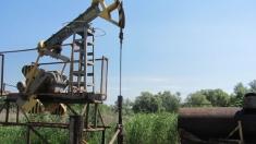 S-a închis şi rafinăria de la Comrat. Petrolul moldovenesc a fost scos la mezat (Mold-Street)