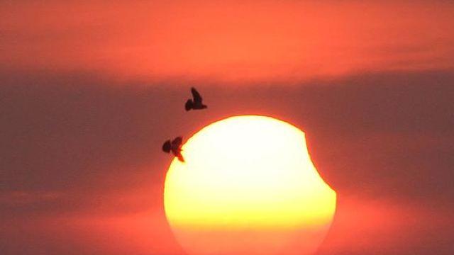 Eclipsă parțială de Soare în prima duminică din acest an
