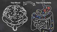 STUDIU | Bacteriile intestinale care ar putea juca un rol în apariţia depresiei