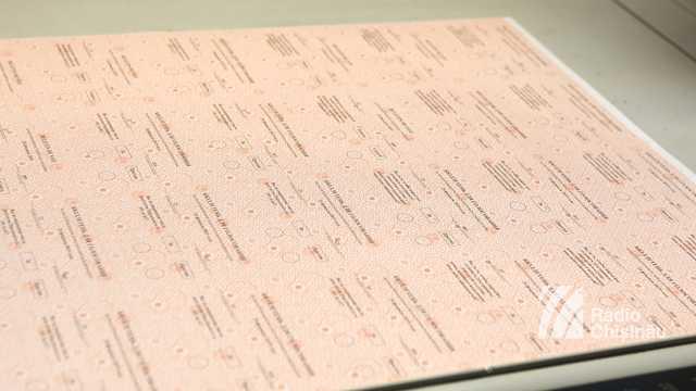 ELECTORALA 2019 | A început tipărirea buletinelor de vot pentru alegerile parlamentare (FOTO)