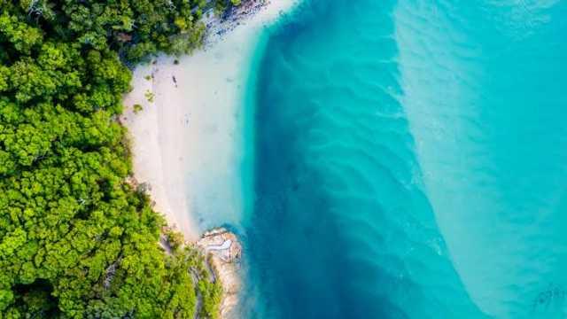 Apa din oceane își va intensifica culoarea albastră sau verde. Fenomen care va dura până la finalul secolului