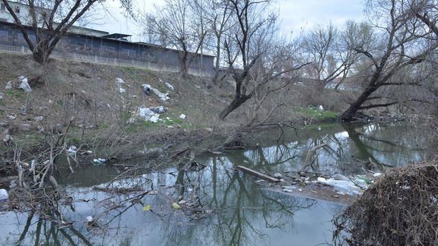 Primăria Chișinău cheamă astăzi locuitorii Capitalei la o acțiune de salubrizare a albiei râului Bâc