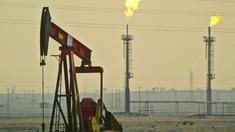 Germania și Polonia au oprit importurile de petrol rusesc via conducta Druzhba, din cauza calității slabe