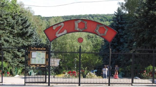 Colecția de animale a Grădinii Zoologice s-a mărit cu aproape 50 de exemplare