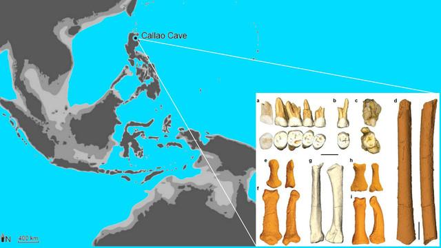 O nouă specie umană. Descoperire istorică pe o insulă din Filipine