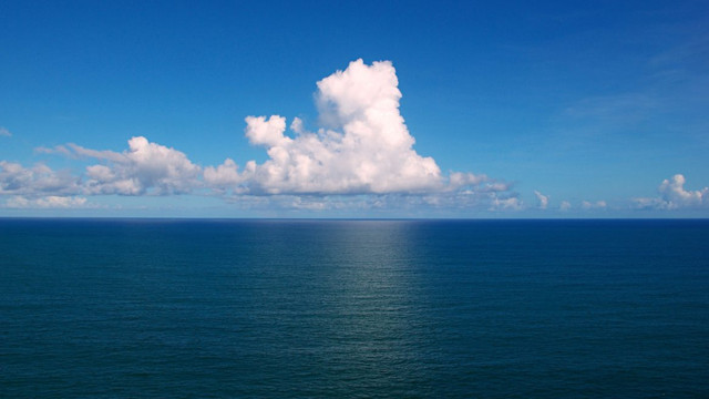 Oceanele Pământului conțin sute de mii de virusuri, multe dintre ele necunoscute