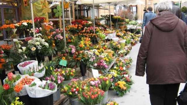 Amenzi de jumătate de milion de lei pentru comercianții de flori, aplicate de Fisc
