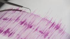 Cutremur cu magnitudinea 4 s-a produs în judetul Buzău