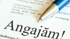 Oportunitate pentru moldovenii cu cetățenie română: Peste 29.000 de locuri de muncă, vacante la nivel naţional