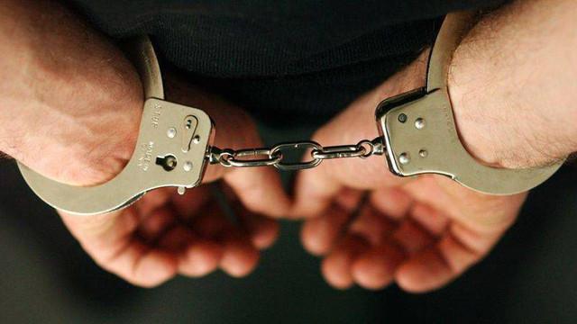 Forţele de poliţie din Europa au derulat o operaţiune comună de anihilare a unei bande criminale internaţionale