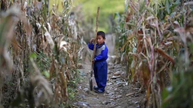Coreea de Nord se confruntă cu cea mai gravă secetă de primăvară din ultimii 37 de ani