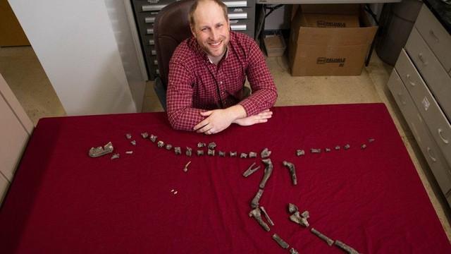O specie de dinozaur rudă cu T. rex, identificată de cercetători