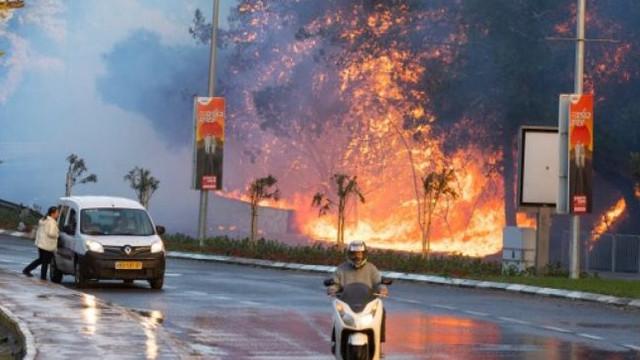 Temperaturi de aproape 50 de grade Celsius în Israel. Incendiile de pădure devastează regiuni din centrul țării