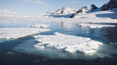 THE GUARDIAN | Cercetătorii şocaţi de topirea calotei glaciale arctice mai devreme cu 70 de ani faţă de previziuni