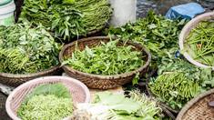 Cinci ierburi şi condimente foarte sănătoase, dovedite științific