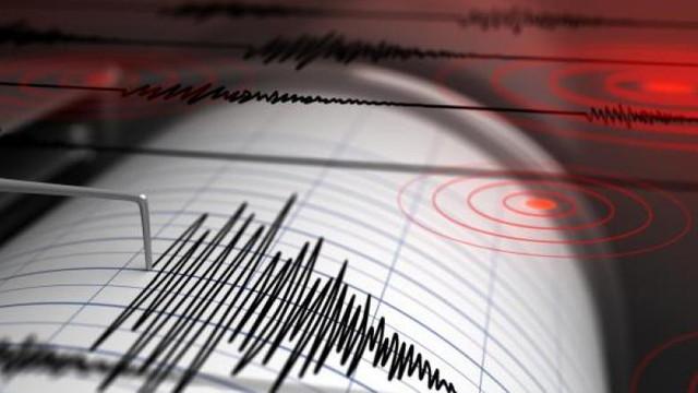 Două cutremure au avut loc joi în zona seismică Vrancea