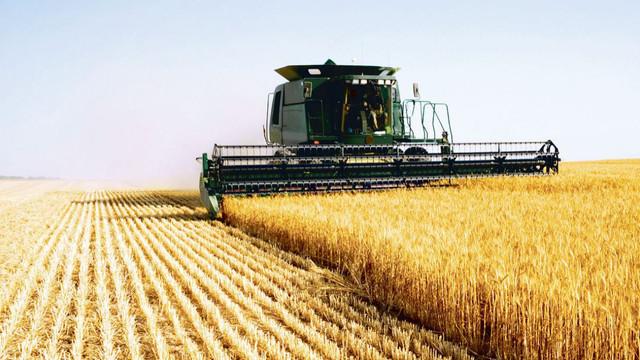 A început campania de recoltare a cerealelor
