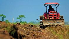 Producătorii agricoli din R. Moldova şi România vor putea stabili parteneriate în cadrul campaniei DAR