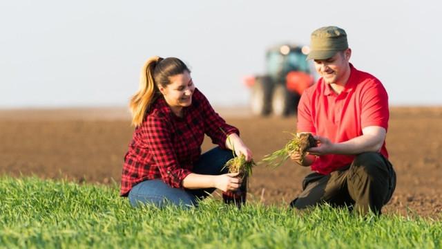 Câți bani au mai rămas în buget pentru subvenții în agricultură (Mold-street)