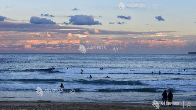 Două plaje din Sydney, închise în urma unui presupus atac al rechinilor
