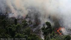 Numărul incendiilor de pădure a crescut cu 83% în Brazilia din cauza secetei şi a defrişărilor