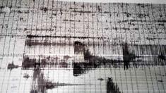 Un cutremur s-a produs joi dimineaţă în Vrancea