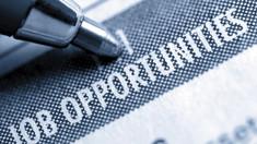 Codul muncii ar putea avea reglementări separate pentru programul flexibil de muncă (Bizzlaw)