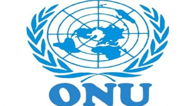 ONU, sesizată în legătură cu situația copiilor japonezi răpiți de unul dintre părinți după separarea acestora