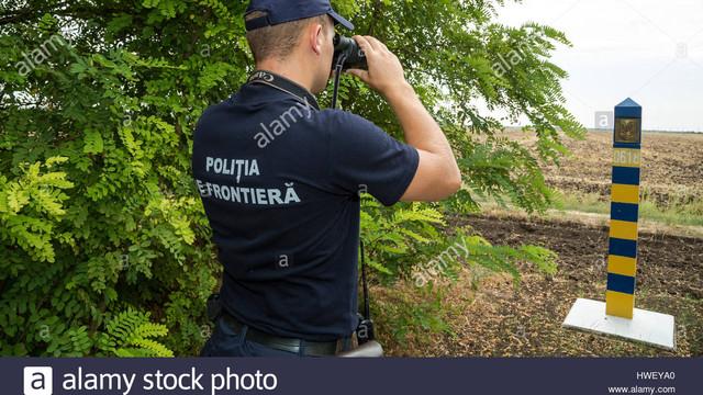 Poliția de Frontieră și ANSA intensifică controlul la frontieră privind combaterea răspândirii pestei porcine africane
