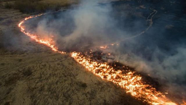 VIDEO | Numărul incendiilor în Pădurea Amazoniană a crescut cu 85% față de 2018