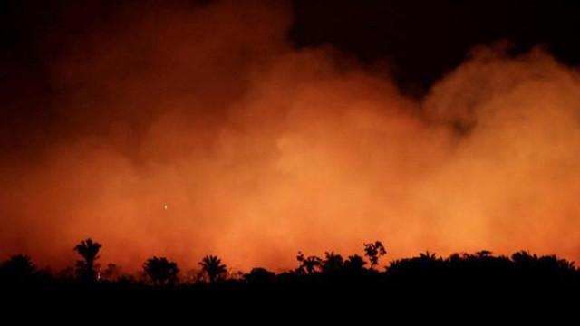 Emmanuel Macron cere introducerea temei la summitul G7: Incendiile din Pădurea Amazoniană sunt o criză internaţională