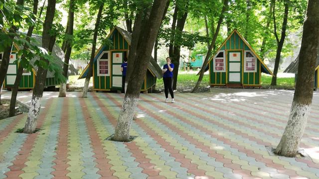 Bilete gratuite la o tabără de odihnă din Vadul lui Vodă