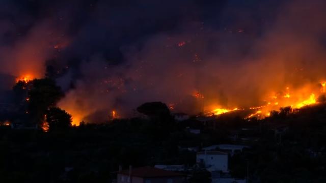 Incendiile de vegetaţie au distrus mai multe păduri din Grecia