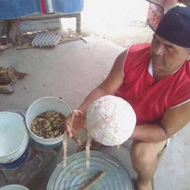FOTO/VIDEO | Un sport Maya, interzis de europeni, este din nou practicat în America